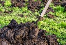 organické hnojivo