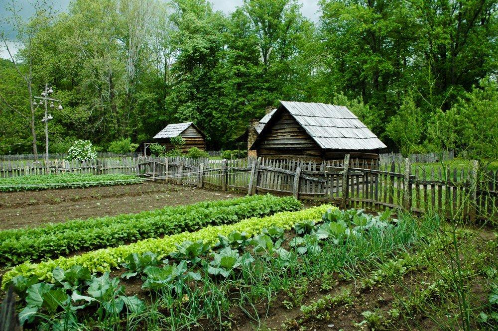 Střídání plodin na záhonech: zeleninová zahrada s dřevěnou chatkou