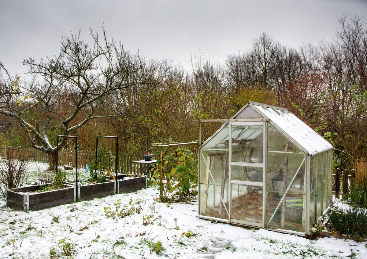 Pěstování v skleníku celoročně, co vysévat v zimě