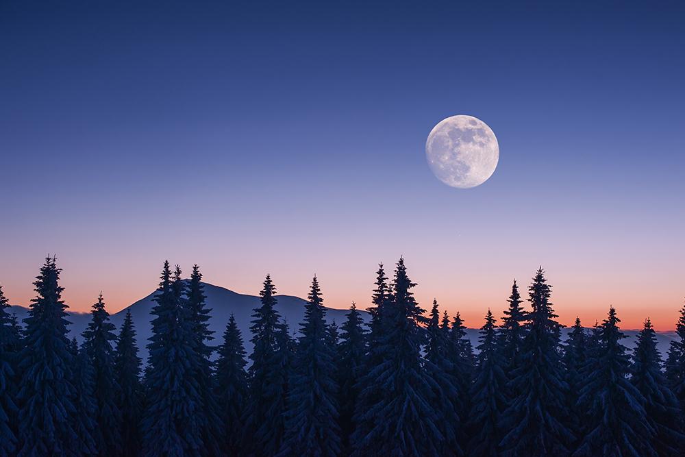Lunární kalendář pro zahrádkáře - duben