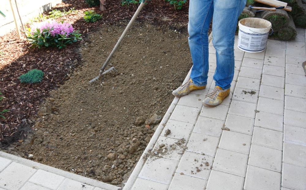 Vyséváme trávník svépomocí