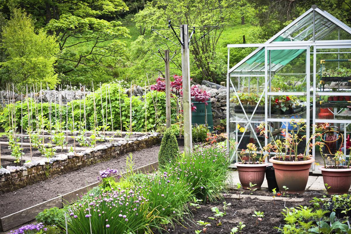 Pařenište, fóliovníky a skleníky