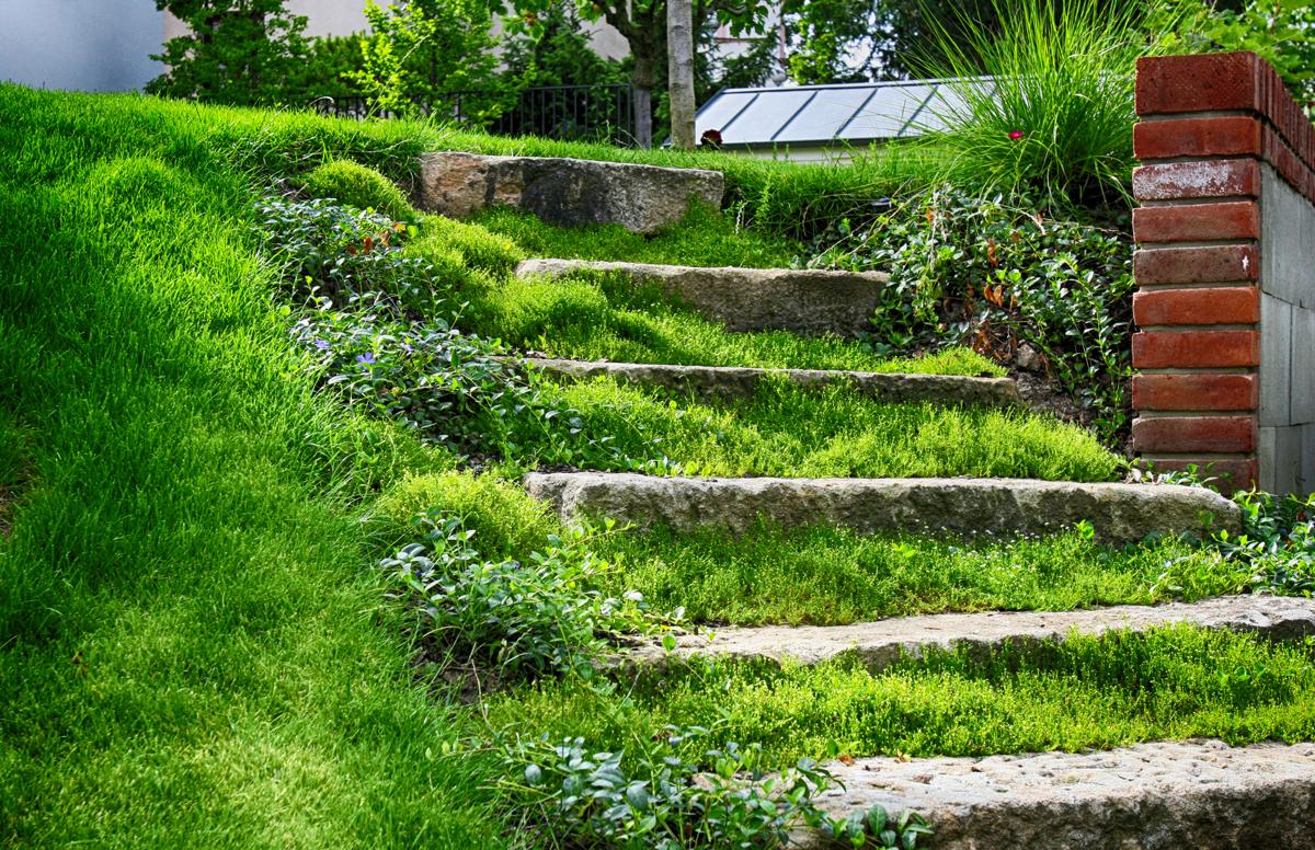 proměna zahrady
