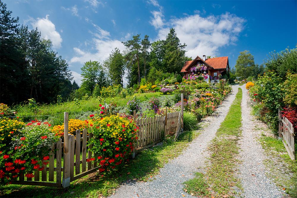 užitková a okrasná zahrada
