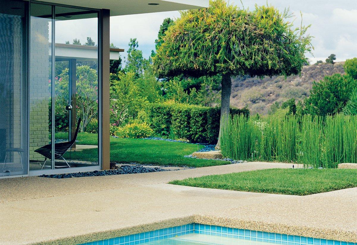 trávník u domu