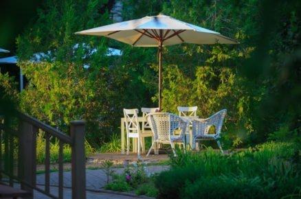 Nenechte se v zahradě rušit: 5 rostlin, které spolehlivě odpudí dotěrný hmyz