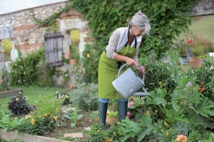 Biozahrada svépomocně: 30 rostlin na bioochranu