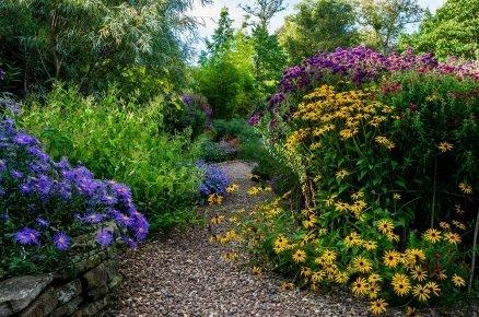 Podzimní kvetení trvalek: Tyto květiny kvetou až do prvních mrazů
