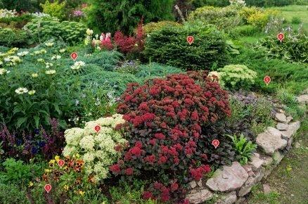 Podzimní záhon: Ani během podzimu nemusí být zahrada fádní