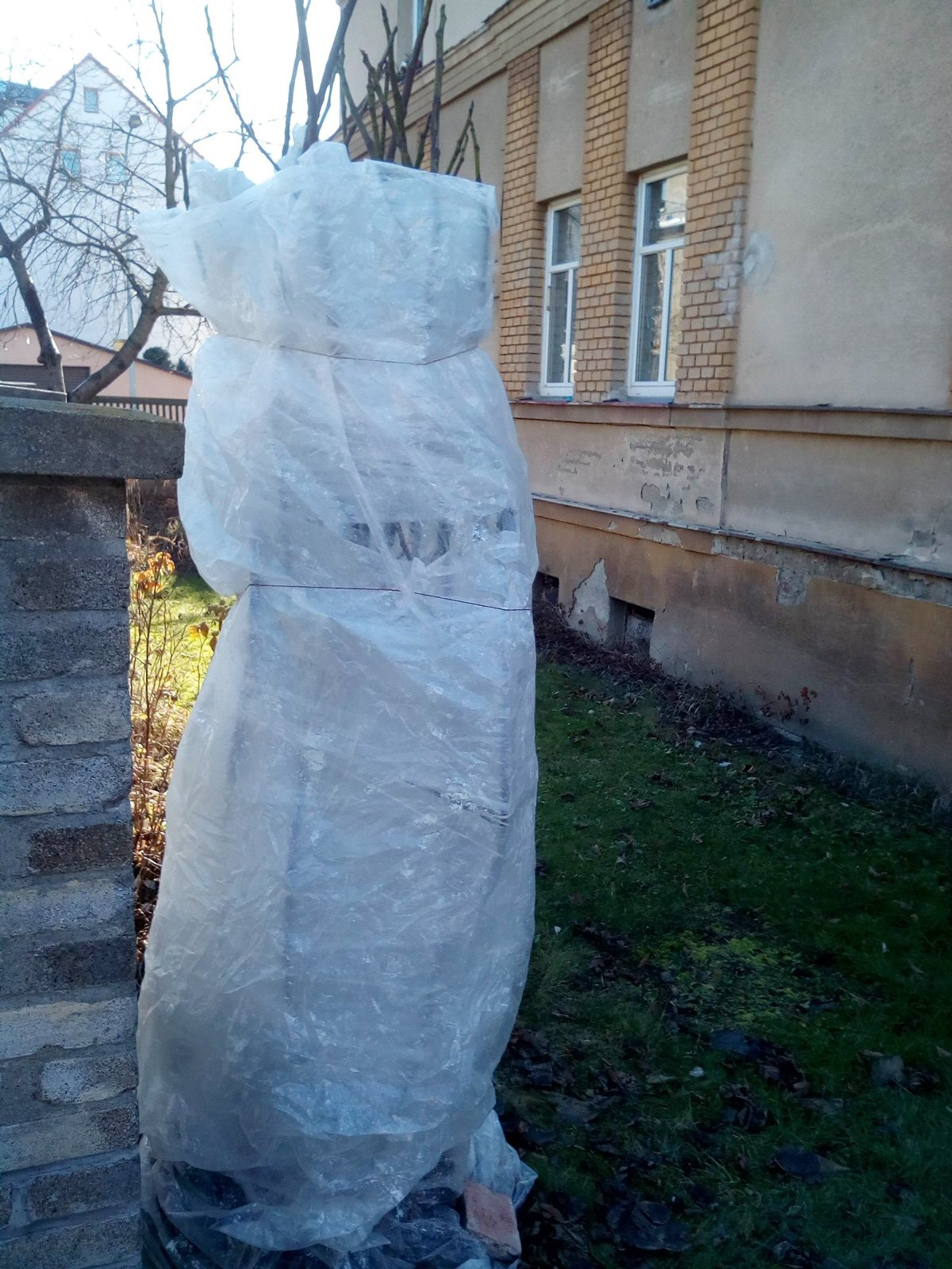 zimní ochrana rostlin