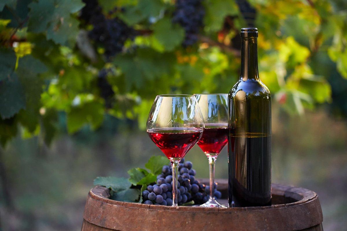ovocné víno