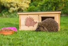 domek pro ježka