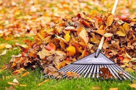 Listí není odpad. Co tedy s ním?