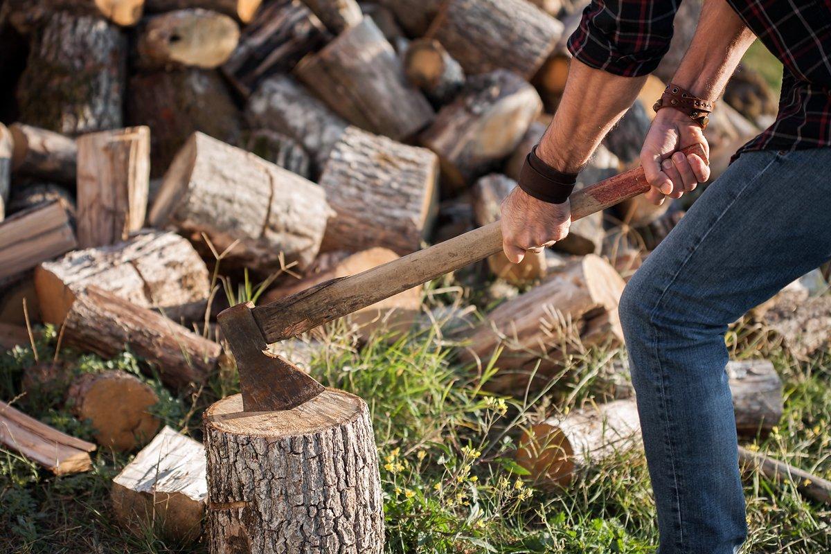 dřevo na zimu