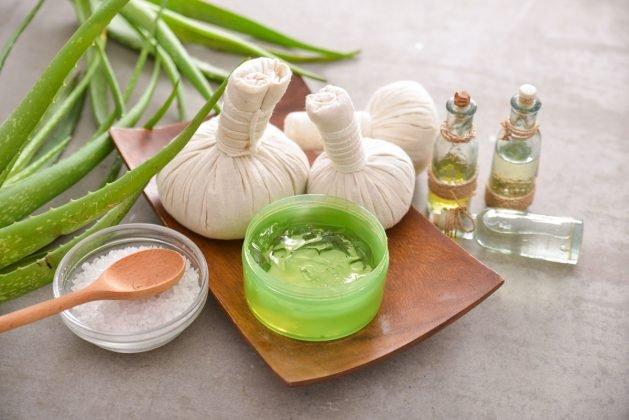 recepty z aloe vera, léčivé rostliny