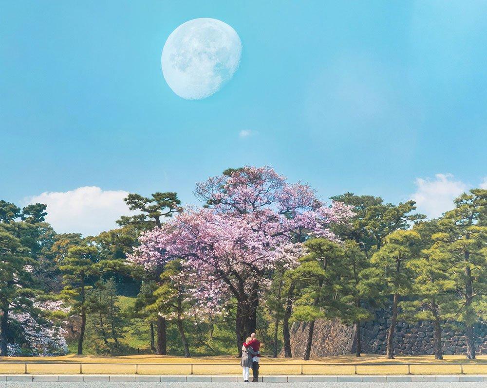 lunární kalendář červen