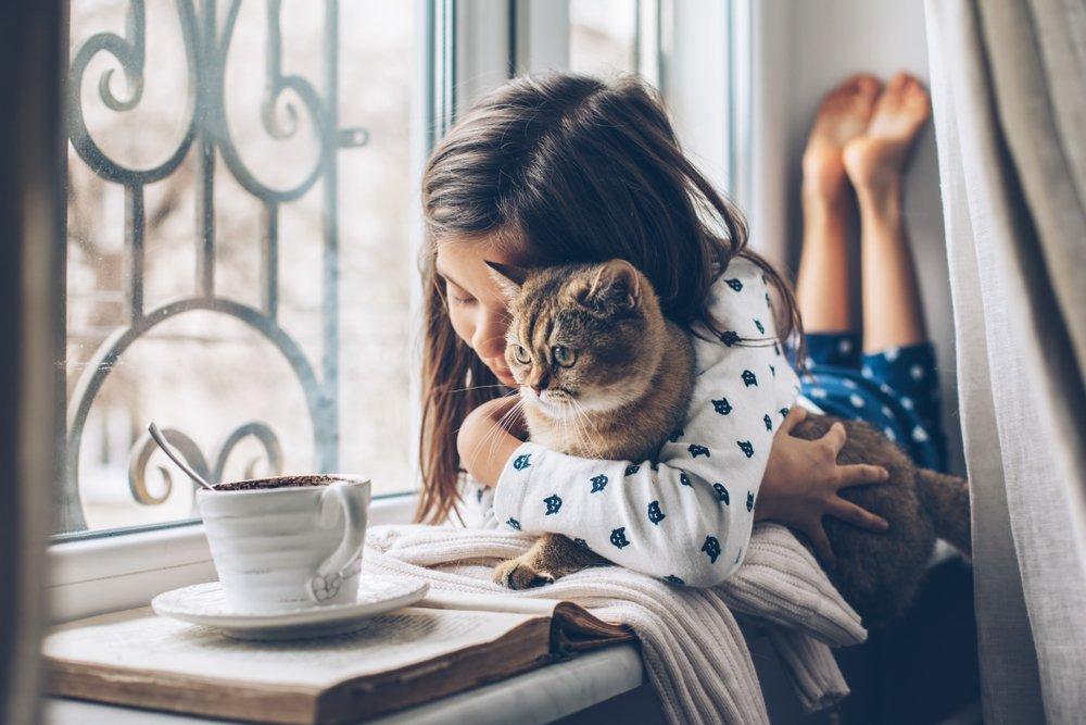 dítě s kočkou leží při okně