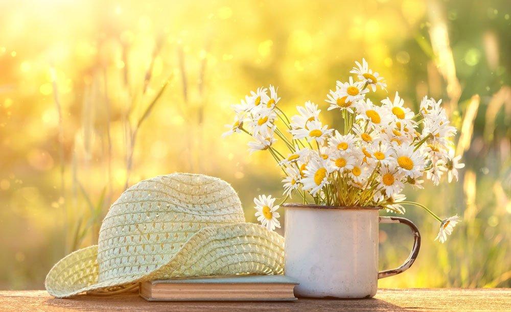 klobouk s květinami v hrníčku