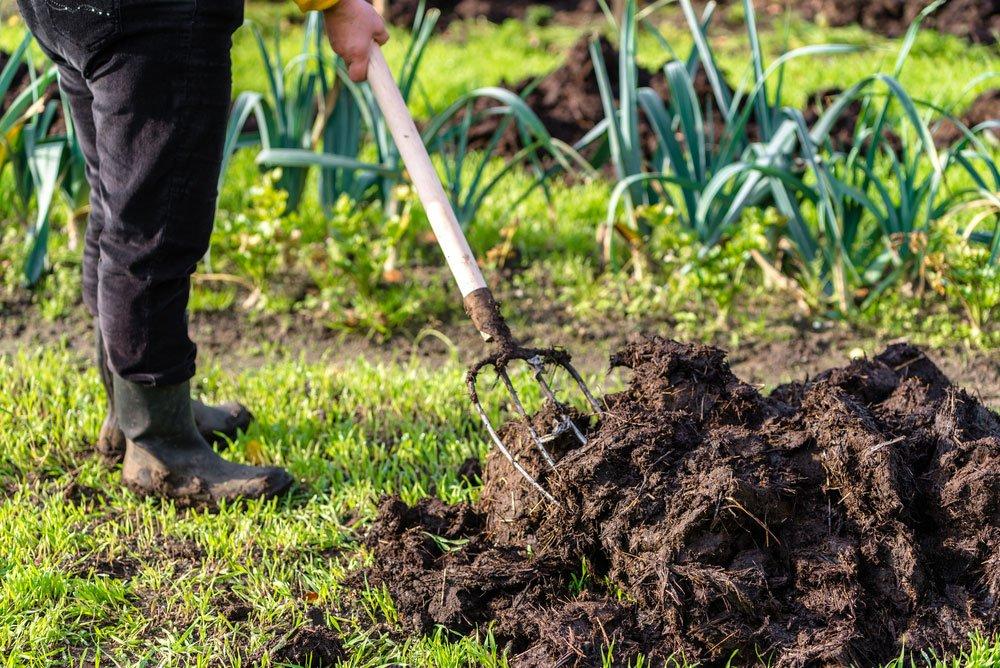 hnojení zahrady maštalním hnojem