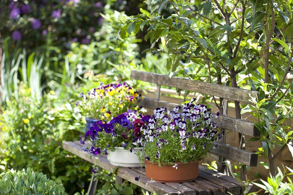 květiny v květináčích na lavičce v zahradě
