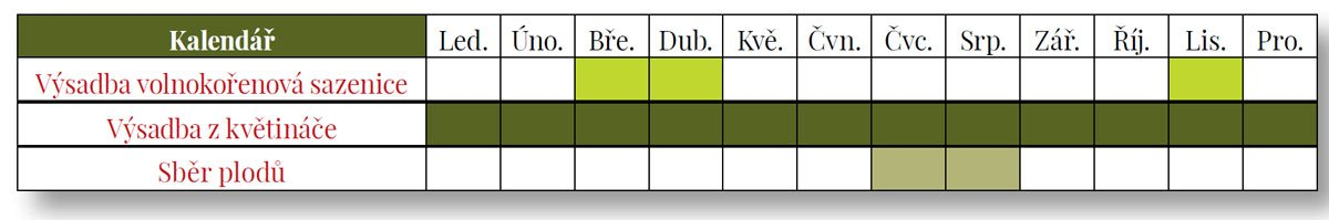 tabulka pro vysázení a sběr moruše