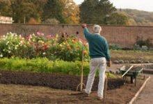zahradkář pracuje na své zahradě se záhonmi