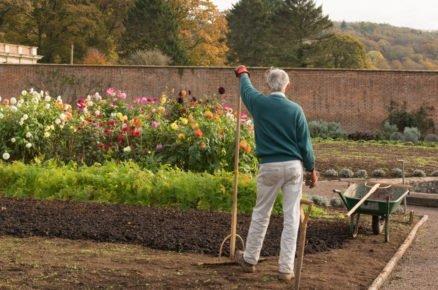 Jak se starat o květinové záhony, aby jste se z nich mohli těšit do pozdního podzimu