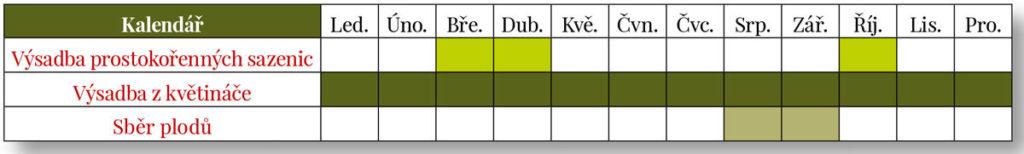 kalendář výsadby a sběru nashi hrušek