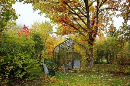 5 důležitých kroků pro zazimování okrasné zahrady