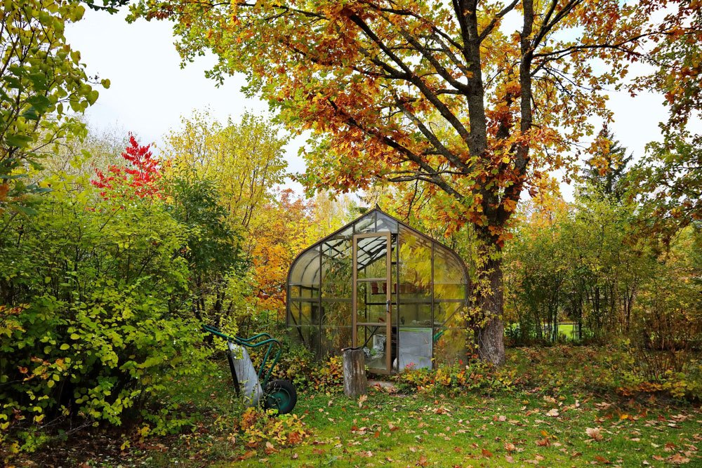 zazimování podzimní zahrady