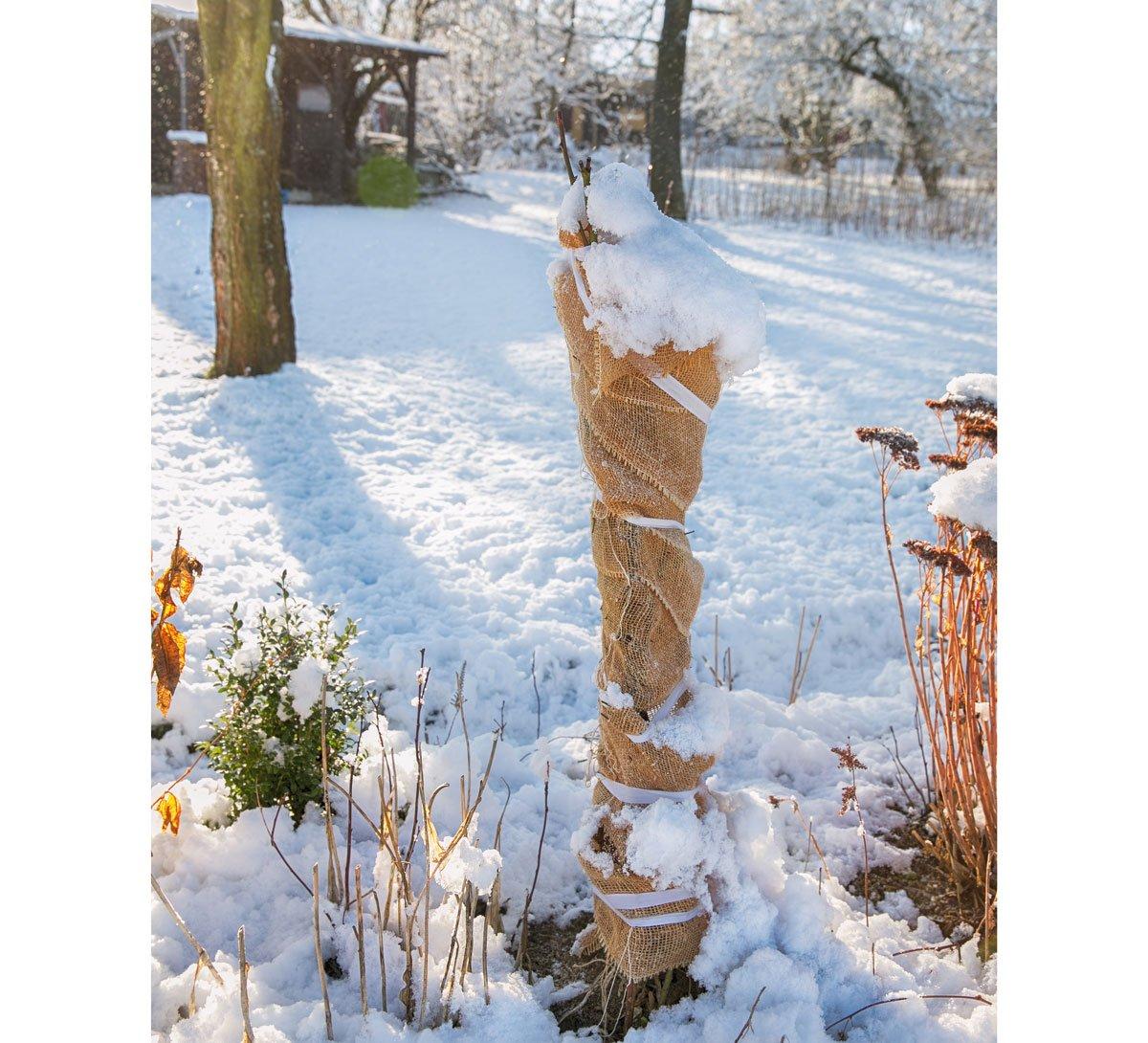 zimní ochrana keře jutovinou