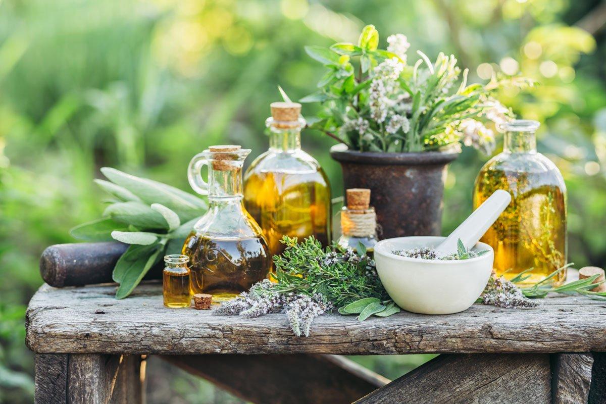 Dubnové léčivé rostliny: různé druhy bylinek a tinktury z nich.