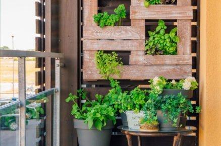 Využití palety na balkónové pěstování bylinek.