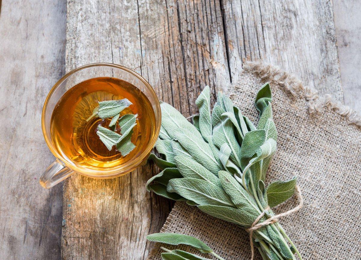Pěstování šalvěje a její využití: čaj
