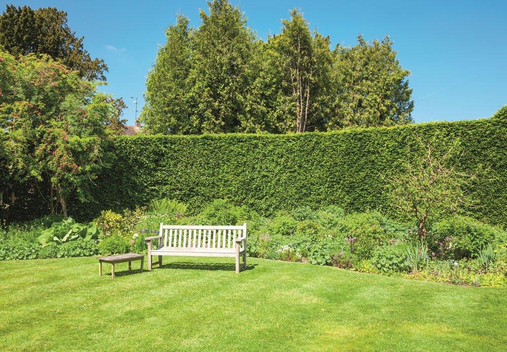 Jak na výsev trávníku