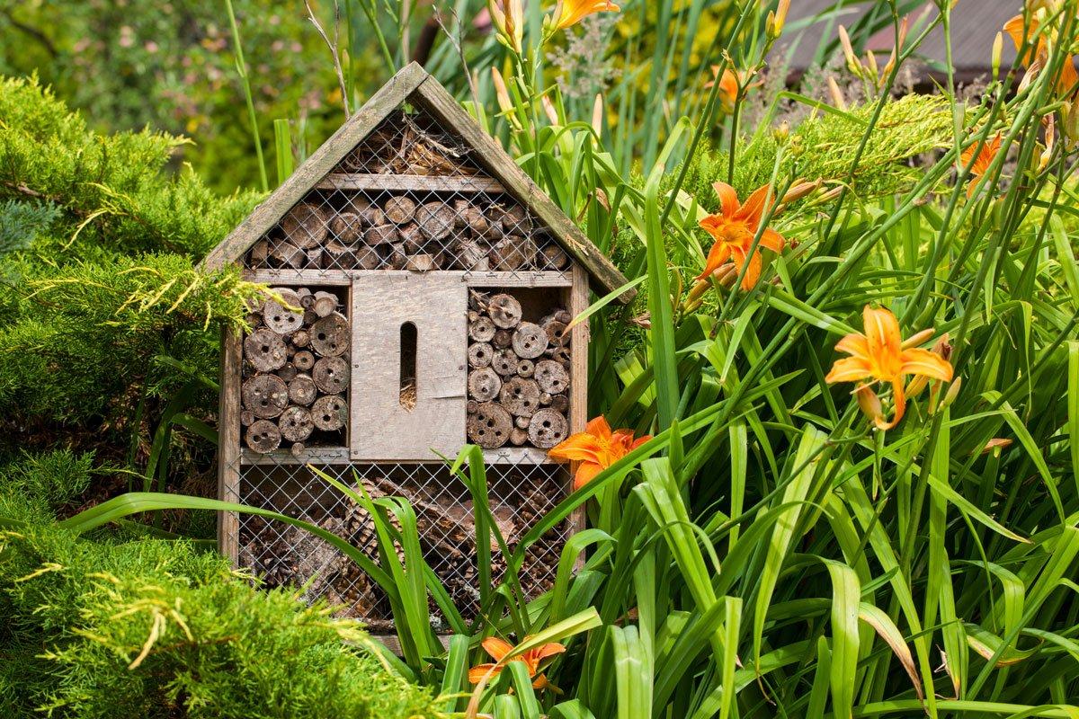 Klimatické změny v zahradě: hotel pro hmyz