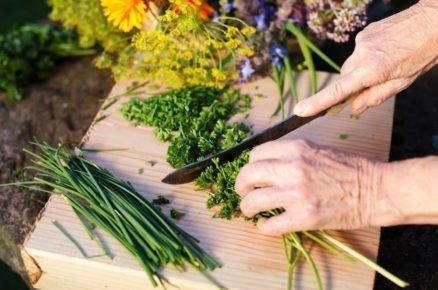 8 aromatických bylinek, které zpestří váš jídelní lístek