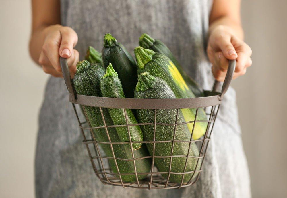 Jak pěstovat cuketu: cuketa v kovovém koši