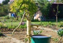 Klimatické změny a zahrada
