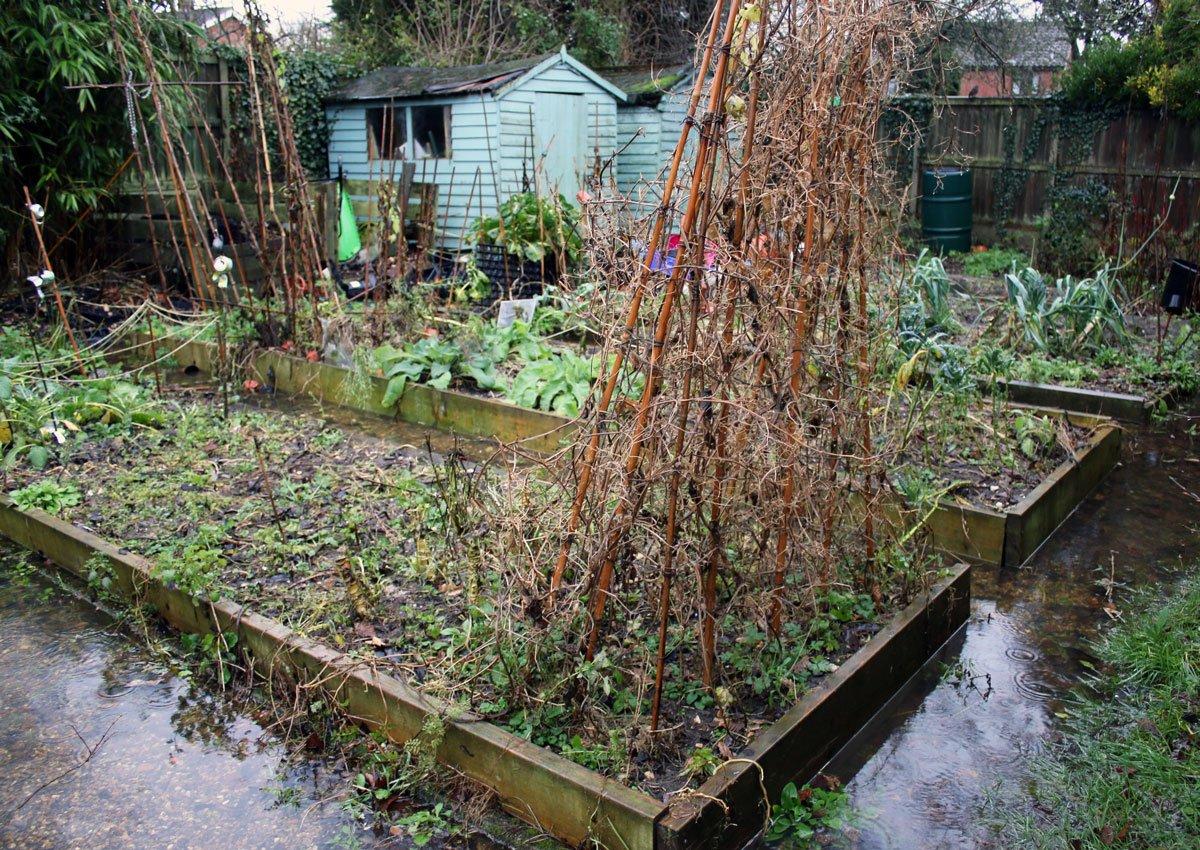 Klimatické změny v zahradě: zahrada po přívalovom dešti