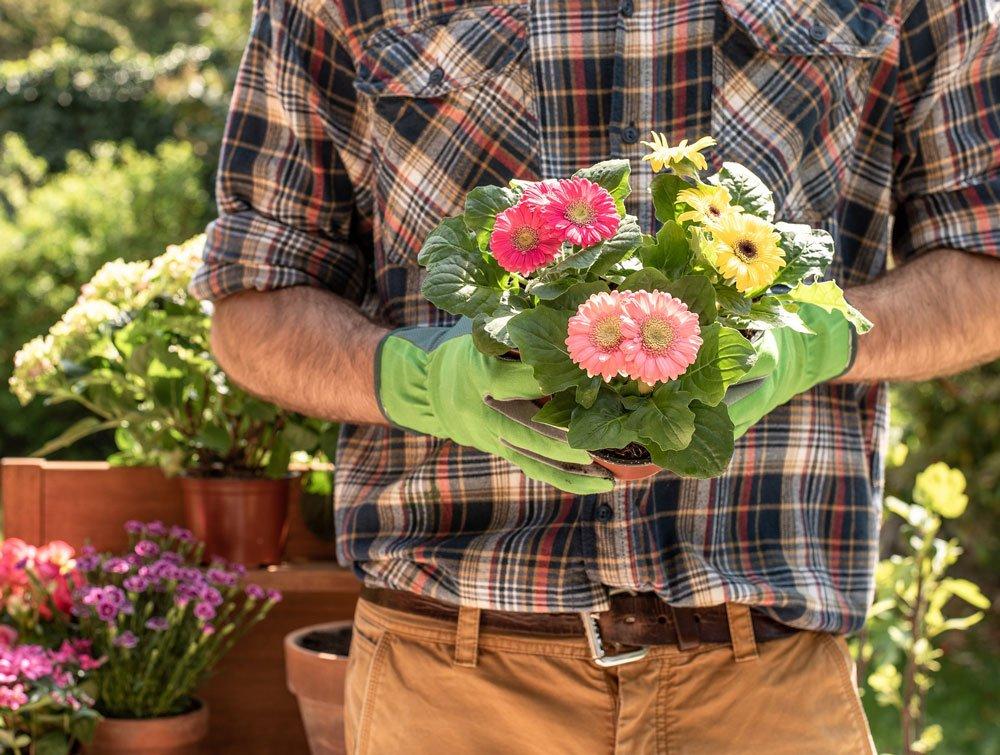 Zahradní technika od firmy Hecht