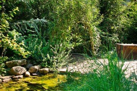 zahrada s jezírkem a altánem z vrby