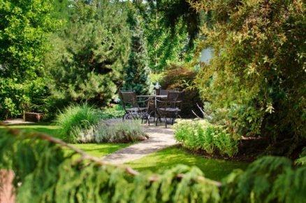 Pohled do zahrady se stromy, trvalkovými záhony a terasou se sezením.
