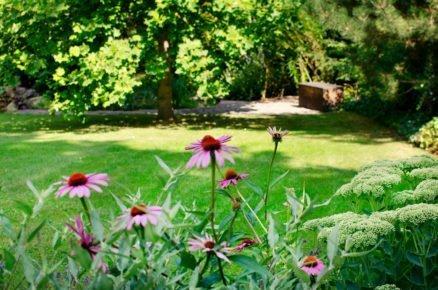 Detail zahrady s okrasnými záhony.