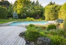 Rostliny vhodné k bazénu