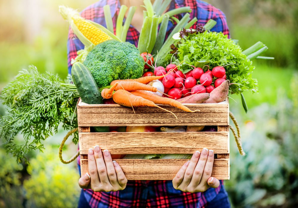 Tipy pro bohatší úrodu a prodloužený sběr plodin