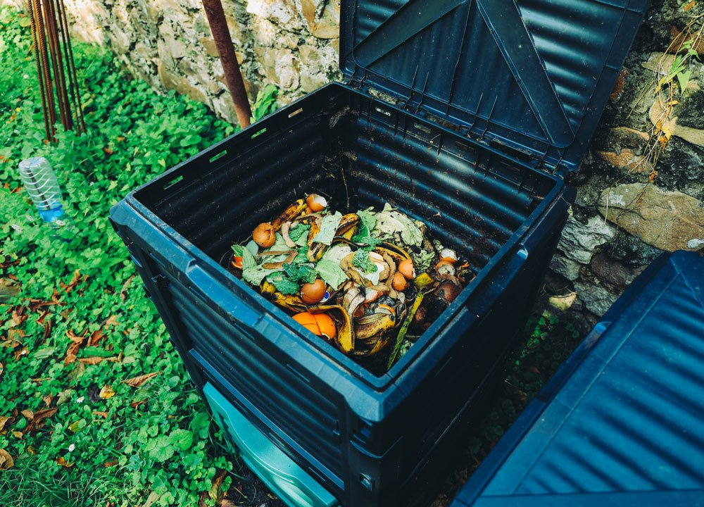 5 nejčastějších problémů kompostování: mušky v kompostu, zapáchající kompost