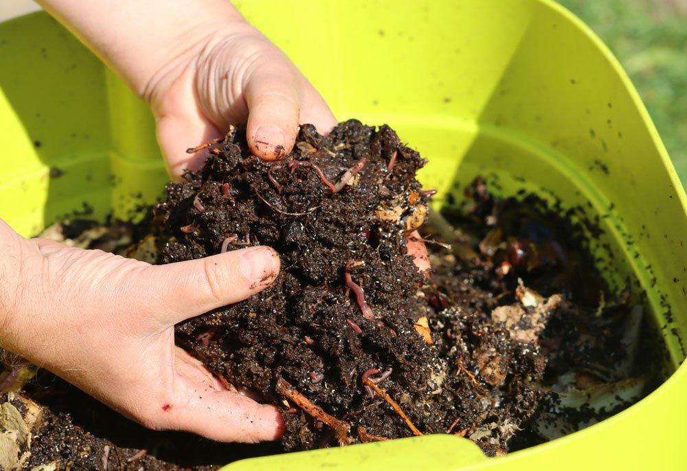 Vermikompostování pomocí žížal v domácích podmínkách