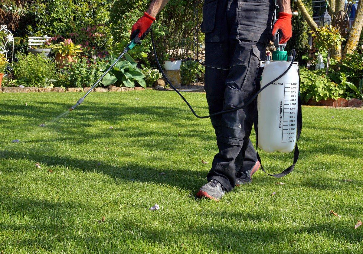 jak pečovat o trávník: Postřik trávníku