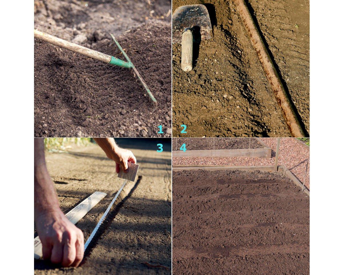 Výsev zeleniny pomocí výsevního pásku: zpracování půdy, rýha na pásek, osivové lůžko, upěchání půdy